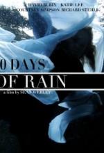 10 Days Of Rain (2010) afişi