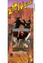 3 Küçük Ninja ve Kayıp Hazine