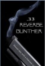 33 Reverse Gunther (2011) afişi