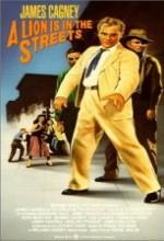 A Lion ıs in The Streets (1953) afişi