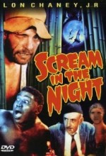 A Scream In The Night (1935) afişi
