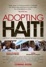 Adopting Haiti (2011) afişi