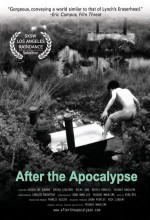 After The Apocalypse (2004) afişi