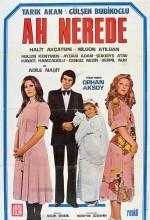 Ah Nerede (1975) afişi
