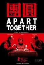 Apart Together (2010) afişi