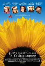 Aramızda Kalsın (2002) afişi