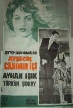 Ayşecik Canımın İçi (1963) afişi