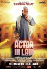 Actor in Law (2016) afişi