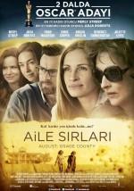 Aile Sırları (2013) afişi