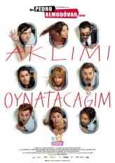 Aklımı Oynatacağım (2013) afişi