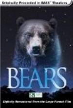 Bears (l) (2001) afişi