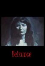 Belzunce (2004) afişi