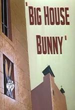 Big House Bunny (1950) afişi