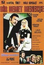 Bir Demet Menekşe (1973) afişi