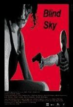 Blind Sky (1998) afişi
