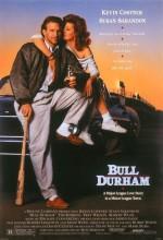 Boğa Durham