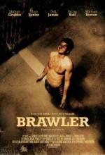 Brawler (2011) afişi