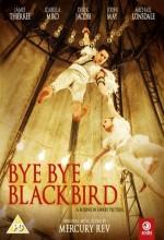 Bye Bye Blackbird (2005) afişi