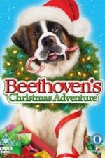 Beethoven's Christmas Adventure (2011) afişi