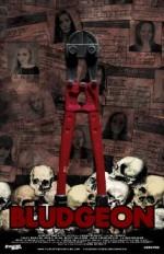 Bludgeon (2013) afişi