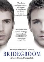 Bridgeroom (2013) afişi