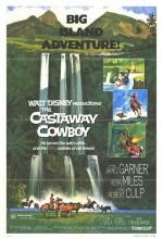 Castaway Cowboy (1974) afişi