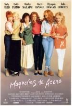 Çelik Manolyalar (1989) afişi