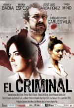 Ceza (ı) (2010) afişi