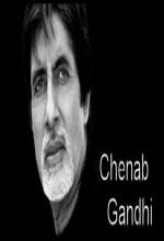 Chenab Gandhi (1) afişi