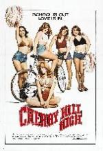 Cherry Hill High (1977) afişi