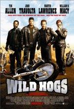 Çılgın Motorcular (2007) afişi