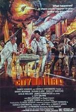 City On Fire (1979) afişi