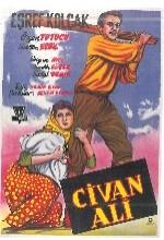 Civan Ali (1958) afişi