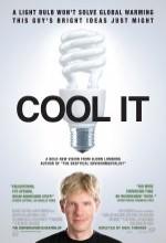 Cool ıt (2010) afişi