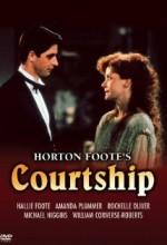 Courtship (1987) afişi