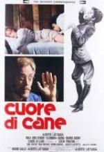 Cuore Di Cane (1976) afişi