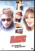 Çapkının Sonu (2002) afişi