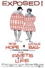 Cilveli Hayat (1960) afişi