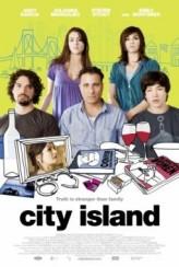 Çılgın Aile (2009) afişi