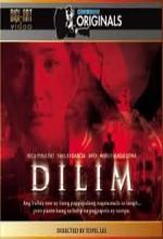 Dilim (2005) afişi