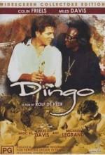 Dingo (1991) afişi