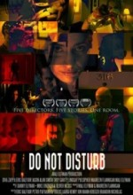 Do Not Disturb (2010) afişi