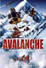 Doğa Felaketi: çığ (2004) afişi