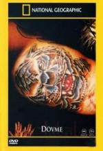 Dövme(ı) (2002) afişi