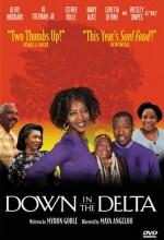 Down in The Delta (1998) afişi