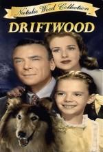 Driftwood(ıı) (1947) afişi