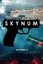 Defusion 3: Skynum (2013) afişi