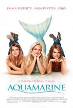 Denizden Gelen Kız (2006) afişi