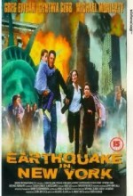 Earthquake in New York (1998) afişi