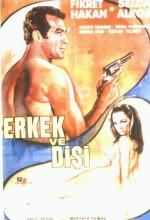 Erkek Ve Dişi (1966) afişi